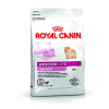 Royal Canin Indoor Life Junior S 500g