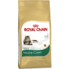 Royal Canin MAINE COON ADULT 10KG