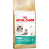 Royal Canin Maine Coon Kitten macskatáp