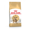 Royal Canin Royal Canin Bengal 10kg
