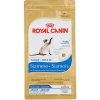 Royal Canin SIAMESE ADULT 10KG