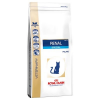 Royal Canin Veterinary Diet Royal Canin Renal Special Feline - Veterinary Diet - 4 kg