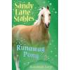 Sandy Lane Stables: Runaway Pony