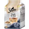 Sheba Fresh & Fine Mini szárnyas válogatás macskáknak (6 x 50 g) 300g