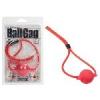 Silicone Ball Gag.