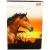 St-Majewski Inspiration lovas A5-ös vonalas 3. osztályos füzet - fehér 12-32