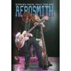 Stephen Davis Aerosmith - Walk this Way