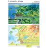 Stiefel Eurocart Kft. A valóságtól a térképig