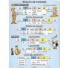 Stiefel Regles de Syntaxe - iskolai oktatótabló