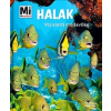 Tessloff - Babilon Kiadó Nicolai Schirawski: Halak - Víz alatti csodavilág