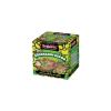 The Green Board Game Brainbox - Dinoszauruszok