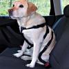 Trixie biztonsági autós kutyahám - méret M: mellkas kerülete 50-70cm