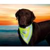 Trixie Biztonsági kendő kutyának l–xl 43–60cm