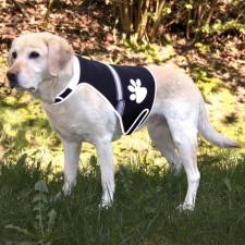 Trixie Mellény Fényvisszaverős M 42-62cm Fekete kutyaruha