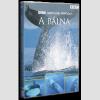 Vadvilág Sorozat - A Bálna (DVD)