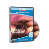 Világunk Titkai 20. - Élet más bolygókon (DVD)