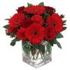 Virág a világba A végzet asszonya - romantikus virágcsokor