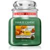 Yankee candle Alfresco Afternoon illatos gyertya Classic közepes méret 411 g